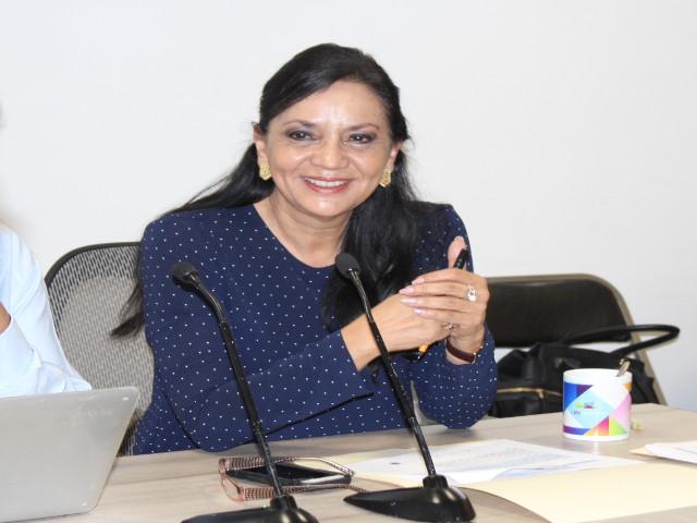 Diputada Leticia Villegas Nava