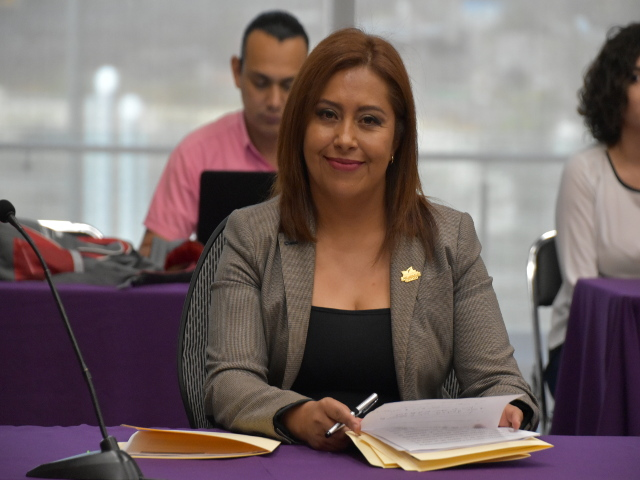 Diputada Érika Guadalupe Domínguez Pérez